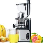 Aobosi Extracteur de Jus Vertical Slow Juicer 80mm